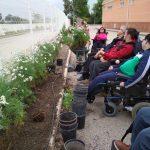El Ayuntamiento entrega un lote de plantas a Aspace para adornar sus instalaciones